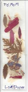 Shayne Bookmark