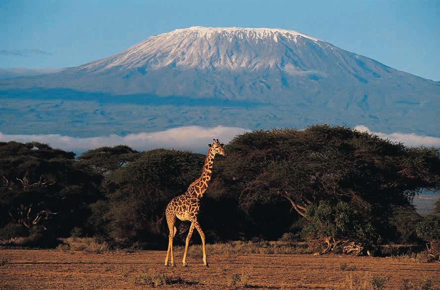 Mount Kilimanjaro: Between Heaven andEarth